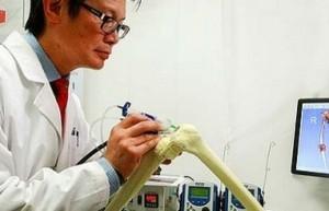 alga e stampa 3d per produrre ossa
