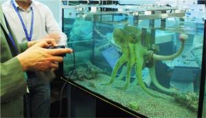 Octopus e PoseiDrone 07