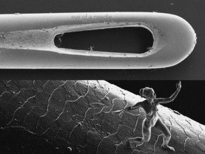 nanoscultura-stampata-in-3d Jonty Hurwitz