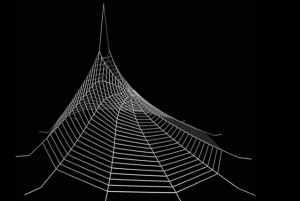 il Mit e le ragnatele sintetiche stampate in 3d 06