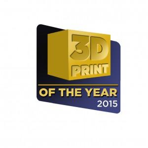 La migliore stampante 3d italiana 2015  printofayear
