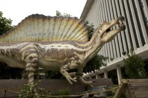 Spinosauros il dinosauro perduto stampato in 3d in motra a Milano 03